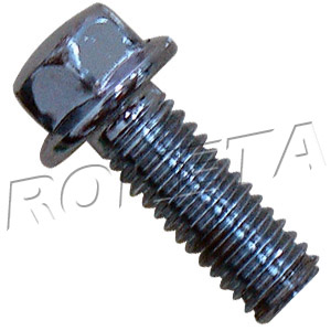 PART 06: ATV-15C HEX FLANGE BOLT M6x11